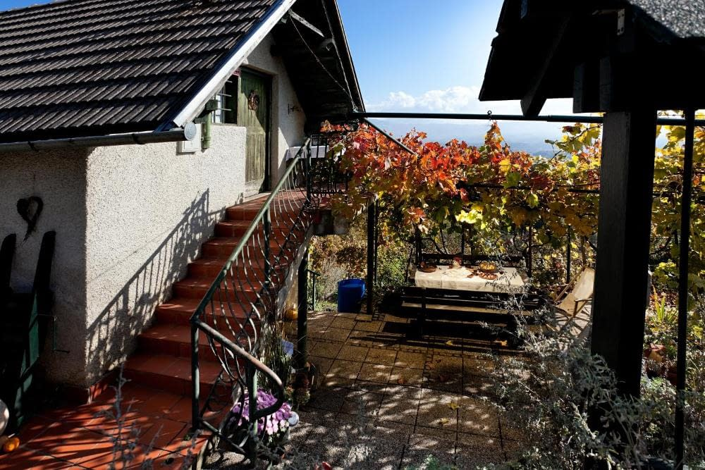 vineyard cottage vercek otočec