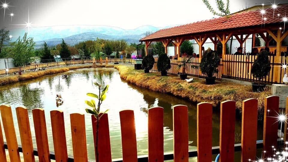 montenegro rivijera makedonija, hotel montenegro rivijera makedonija
