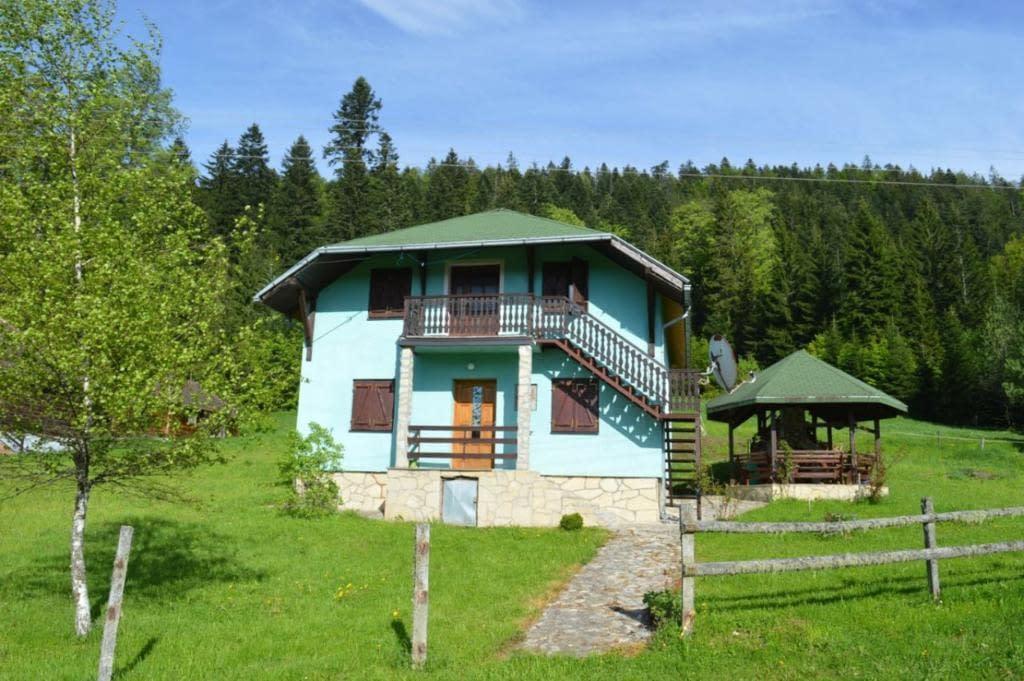 mystic forest hostel, mystic forest hostel tara